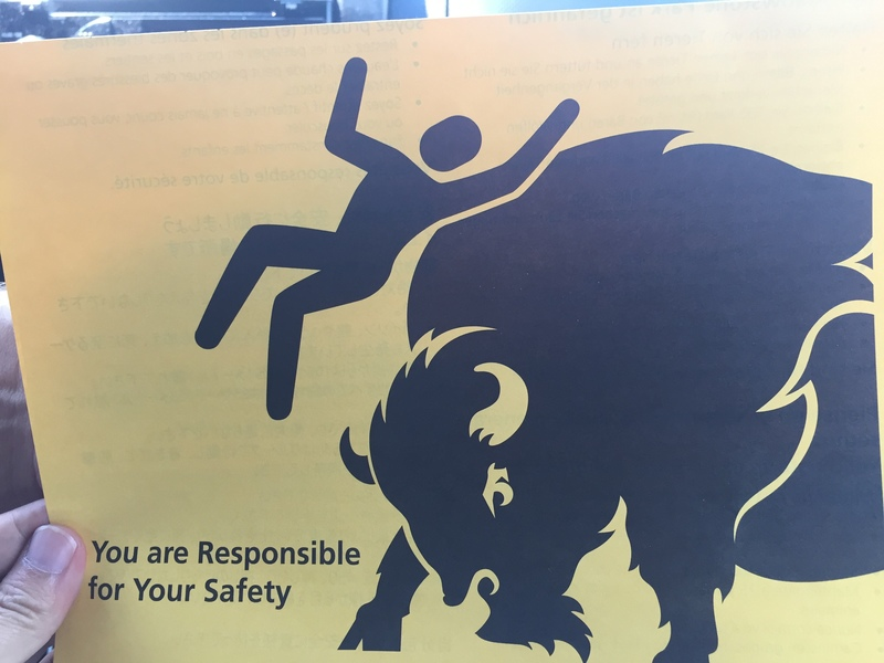 You are responsible for your safety